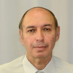 Марк Амусин